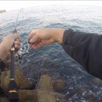 釣りは場所が重要!?