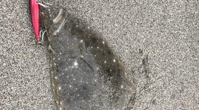 2017年8月27日遠州灘サーフまさかのスピンブリーズでマゴチ釣ったよ!